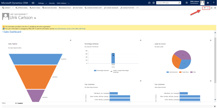 Full Sales Activity Dashboard on User form in MS Dynamics CRM