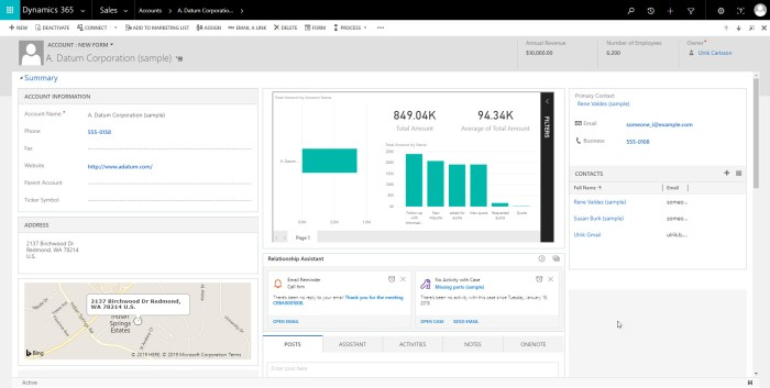 Power BI on Dynamics 365 form